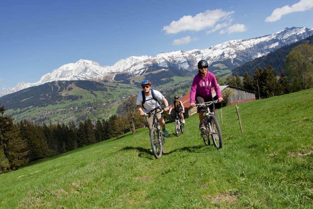Mountain_biking_horizontal-1000.jpg
